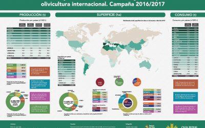 Informe Caja Rural de Jaén sobre Coyuntura para la Olivicultura