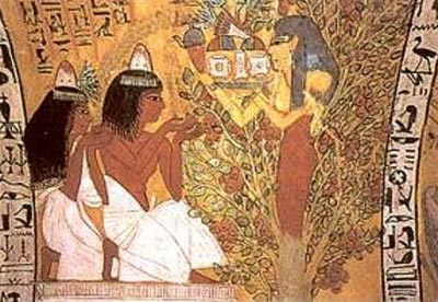 OLIVE GROWING AND EVOO IN ANCIENT EGYPT