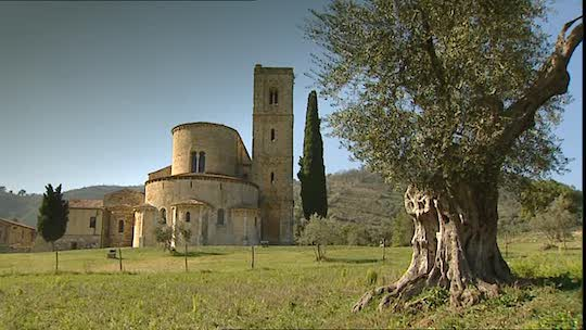 CHARLEMAGNE, OLIVE TREES AND THE ABBEY OF SANT'ANTIMO WERE ALL A TRIBUTE TO EVOO