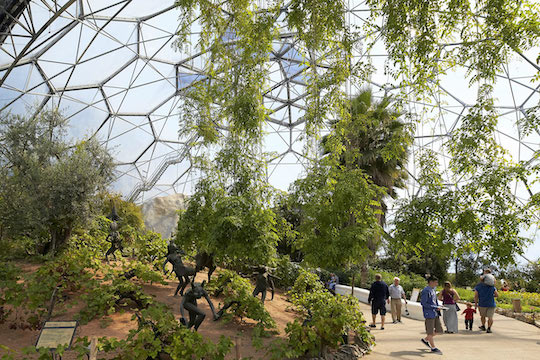 THE OLIVE TREE MUST BE PRESENT IN THE GARDEN OF EDEN, THE LARGEST GREENHOUSE ON THE PLANET